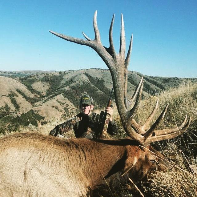 Utah Elk Dakota Lenske