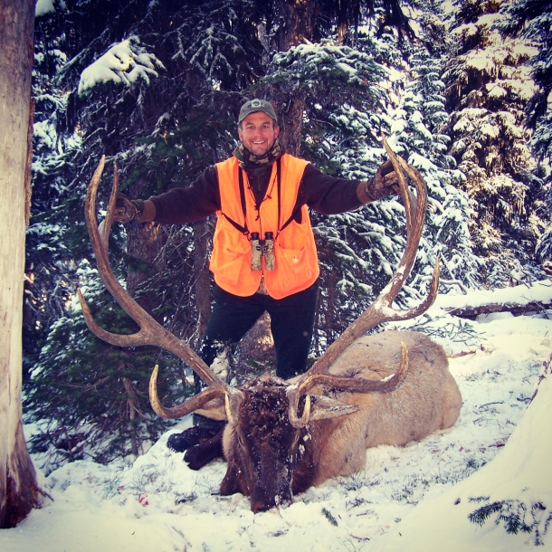 Bob Newland elk
