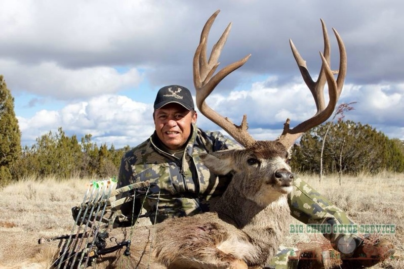 Big Chino Mule Deer