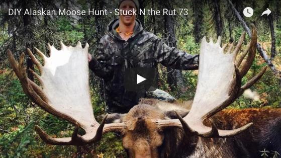 Video do it yourself alaska moose hunt rack camp solutioingenieria Gallery