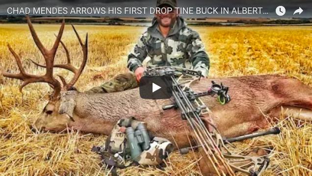 Video: Bowhunting Alberta Mule Deer with Chad Mendes