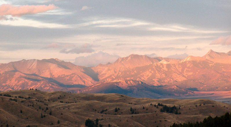 Crazy Mountains elk